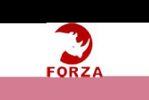20-forza-logo